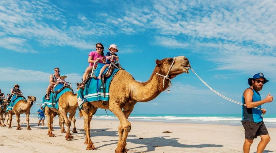 Camel rider around villa nusa dua Bali